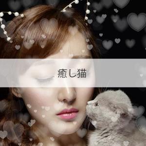 大阪 新大阪 中国エステ 癒し猫 バクサイ 2ch 基盤 本番